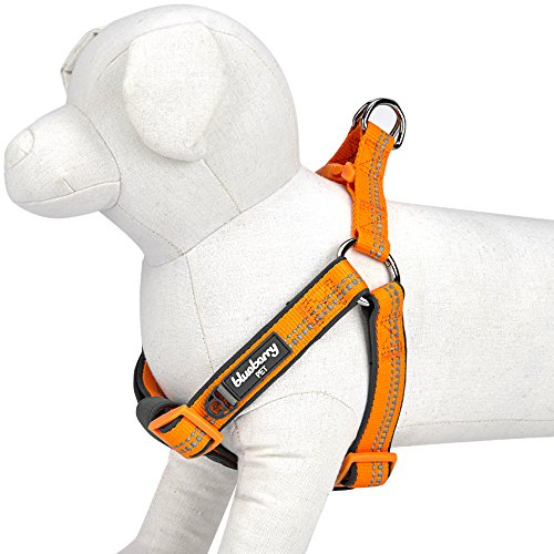 Blueberry Pet 4 Colors Soft & Comfy New 3M Reflective Step-in Pastel Color Padded Dog Harness, Chest Girth 20 - 26, Pastel Orange, Medium, Adjustable Harnesses for Dogs