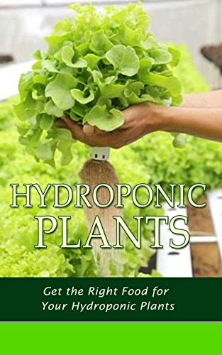 Hydroponic Plants: Get the Right Food for Your Hydroponic Plants