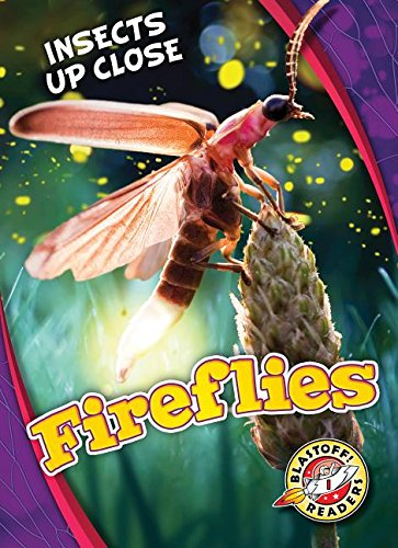 Fireflies (Blastoff Readers. Level 1: Insects Up -