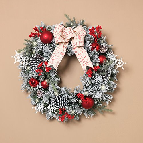 Outdoor Lighted Artificial Christmas Wreaths - 9