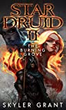 Star Druid II: The Burning Grove