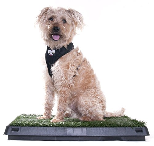 Downtown Pet Supply Dog Pee Potty Pad, Bathroom Tinkle Artificial Grass Turf, Portable Potty Trainer (20 x 25 inches with Drawer)