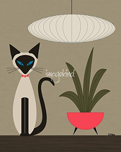 Imagekind Wall Art Print Siamese On Tabletop by Donna Mibus