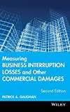 img - for Measuring Business Interruption Losses and Other Commercial Damages book / textbook / text book