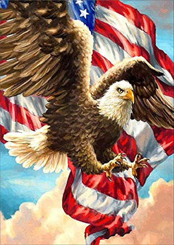 5D Diamond Painting Kit Full Drill,Annomor DIY Diamond Rhinestone Painting Kits Embroidery Arts Craft,Home and Office Wall Decor or Birthday, Anniversary, Wedding Gift (Eagle with US Flag) ()