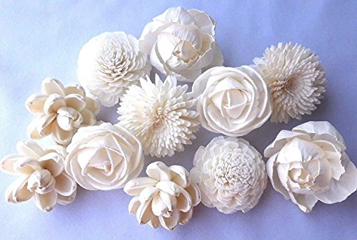 Jikkolumlukka 12 White Mix Flowers Sola Balsa Wood Diffuser Craft Decor Fragrance DIY Bouquet Wedding