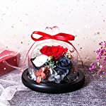 Eternal-Rose-Preserved-Flower-Rose-Handmade-Fresh-Flower-Rose-with-Beautiful-Creative-Heart-Design-a-Gift-for-Valentines-Day-Mothers-Day-Christmas-Anniversary-Birthday-Thanksgiving-GirlsRed