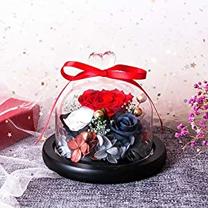 Eternal Rose- Preserved Flower Rose Handmade Fresh Flower Rose with Beautiful Creative Heart Design a Gift for Valentine's Day Mother's Day Christmas Anniversary Birthday Thanksgiving Girls(Red) 3