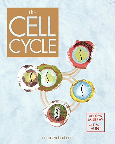 The Cell Cycle: An Introduction