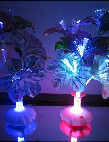 HJLHYL Optical Fiber Flowers Colorful Peacock Feathers Vase LED Night Light