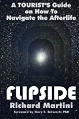 FlipSide: A Tourist's Guide on How to Navigate the Afterlife 1st (first) by Martini, Richard (2011) Paperback Paperback