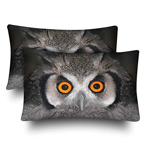 SPXUBZ White Faced Owl Orange Eyes South Africa Home Decor Gift Rectangular Indoor Cotton Pillowcase (Two Sides),2PC]()