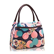 Durable Cute Lunch Bag Tote Bag Lunch Organizer Lunch Holder Lunch Container Picnic Food Holder Bento Lunch Pouch Travel Totes Reusable Carry Bags for Kids and Adults (Pattern C)
