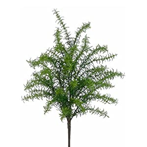 "24"" Rosemary Bush Green (Pack of 4) 14"