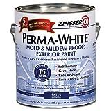RUST-OLEUM 03101 Exterior Mildew Performance Paint, White