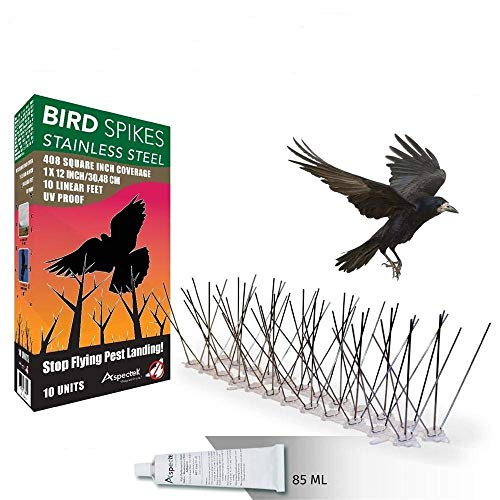 (Aspectek Stainless Steel Bird Spikes 10 Feet (3 Metre), Bird Deterrent Kit With Transparent Silicone)
