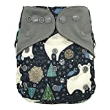Best Blueberry Bottom Cloth Diaper Covers - Overnight AIO Cloth Diaper Hybrid – with Charcoal Review