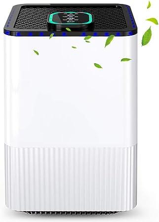 Purificador de Aire para hogar con filtración de 4 Capas y función de Temporizador,Purificador de Aire con Filtro HEPA Real y ionizador,contra la Alergia, Polvo, Polen, Caspa de Mascotas, Moho, Humo: Amazon.es: