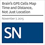 Brain's GPS Cells Map Time and Distance, Not Just Location | Laura Sanders
