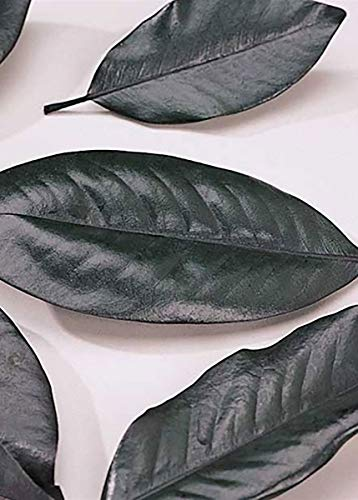 - Afloral Box of 200 - Bulk Preserved Magnolia Leaves in Dark Green