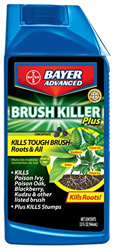 Bayer Advanced 704640 Brush Killer Plus Concentrate, 32-O...