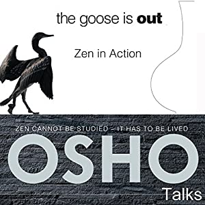 The Goose Is Out Audiobook