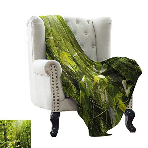 BelleAckerman Winter Warm Blanket Nature,Forest with Sunray Foliage Leaf Branches Woodland Eco Jungle Misty Picture,Lime Green Brown Reversible Soft Fabric for Couch Sofa Easy Care 30