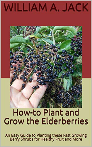How-to Plant and Grow the Elderberries: An Easy Guide to Planting these Fast Growing Berry Shrubs for Healthy Fruit and More (Trees for Home and Garden Landscpaing Book 15) by [Jack, William A.]