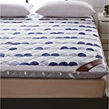 CNZXCO Flannel Mattress pad Protector Folding Tatami pad, Student Dormitory Mattress Japanese Bed roll Anti-skidding Soft-A 100x200cm(39x79inch)