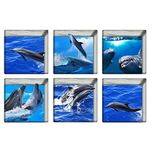LEERYA 6pcs 13x13cm Dolphin Pattern 3D Anti Slip Waterproof Bathtub Sticker (Bathroom Appliques)