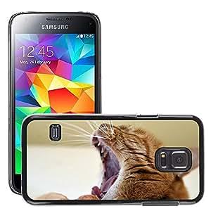 Etui Housse Coque de Protection Cover Rigide pour // M00113907 Gato Felino Gato el dormir Gatos Red // Samsung Galaxy S5 MINI SM-G800