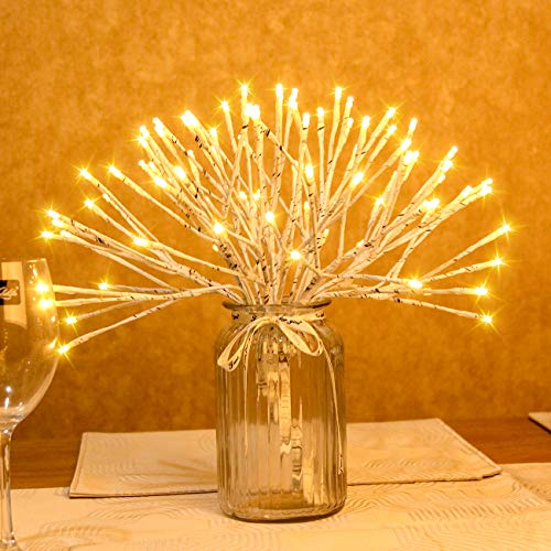 Most Popular Lighted Holiday Displays