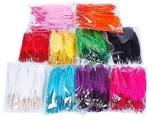 Colorful Goose Feathers 100pcs/pack/ (10pcs X10colors) (4--6 inch) -