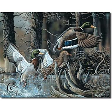 Ducks Unlimited Beaver Pond Tin Sign Tin Sign , 16x13 by Poster Discount