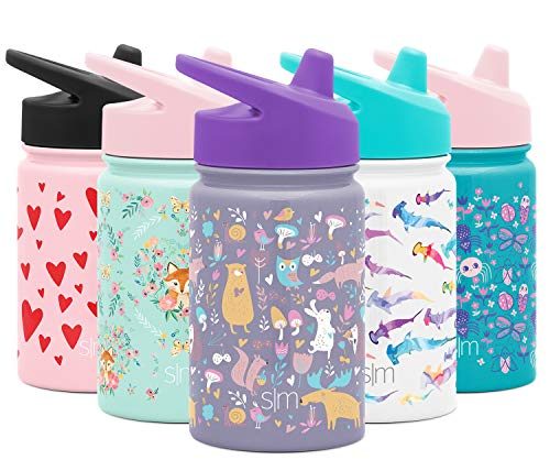 Simple Modern SMC-SIP-10-WDF Kids Summit Sippy Thermos 10oz-Stainless Steel Toddler