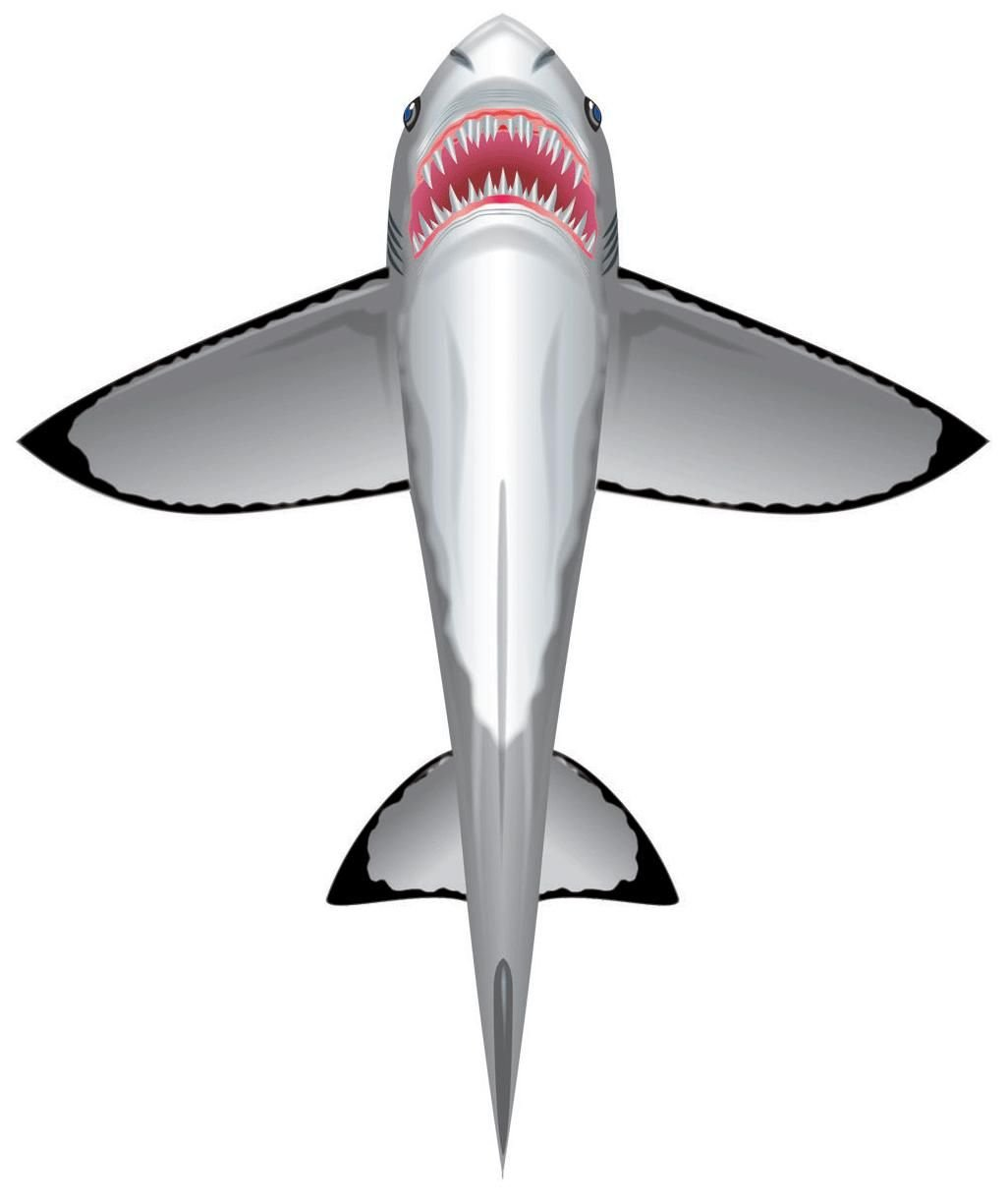 WindnSun SeaLife Great White Shark Nylon Kite-60 Inches Tall