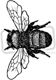 A7 'Bumblebee' Unmounted Rubber Stamp (SP00000613)