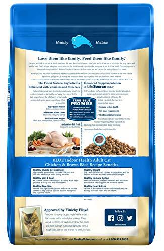 Buy the best dry cat food for indoor cats