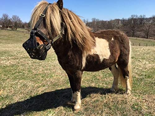 size 3.5 Small Pony//Mini GreenGuard Equine Grazing Muzzle,