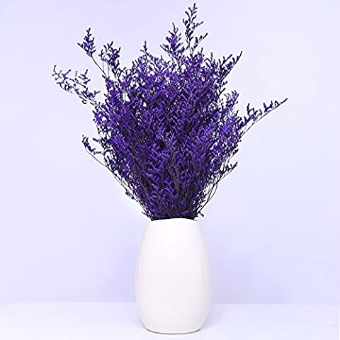 Fashion Dried Flower Arrangement Forget me not Floral Home Office Shop Decor UHBGT Purple - Dried Flower Shop
