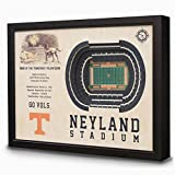 NCAA Tennessee Volunteers - Neyland Stadium Stadiumview Wall Art, One Size, Birch Wood