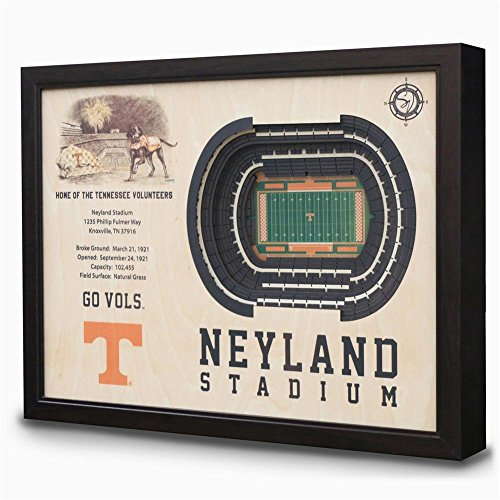 NCAA Tennessee Volunteers - Neyland Stadium Stadiumview Wall Art, One Size, Birch Wood by Sportula