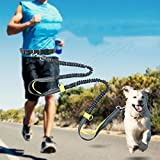 "Kyson Retractable Hands Free Dog Leash with Dual Bungees for Running,Walking,Hiking,Reflective Stitching,Adjustable Leash|5.3-8.5Ft|,Waist Belt|27.6""-47.3""