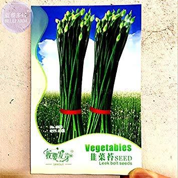 2018 hot Sale 1 Original Pack, 50 Seeds/Pack, Fresh Garlic Chives Seeds Allium tuberosum Chinese Chives, Chinese Leek #nf133