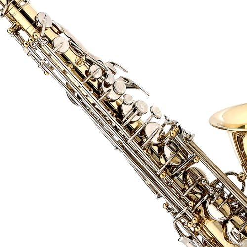 Cecilio AS-280LN - Kit de saxofón alto (para nivel principiante ...