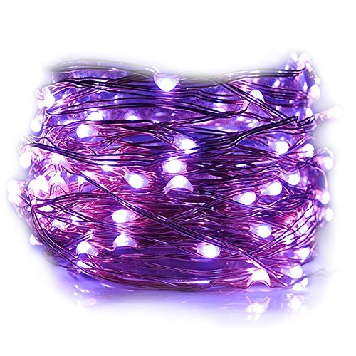 HAHOME Waterproof Fairy String Lights,33Ft 100 LEDs Indoor and Outdoor Starry Lights with Power Supply for Christmas Halloween Wedding and Party Decoration,Purple -