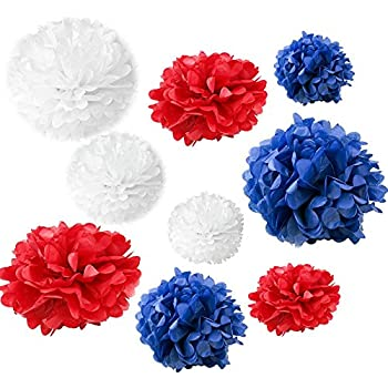 Amazon somnr set of 18pcs mixed royal blue red white party somnr set of 18pcs mixed royal blue red white party tissue pom poms wedding flowers mightylinksfo