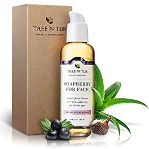 Organic Face Wash for Dry Skin, pH 5.5—The Only Organic Facial Cleanser that Naturally Tones & Hydrates Rough Skin with Creamy Soapberry Lather, Relaxing Lavender, 6oz—Tree to Tub