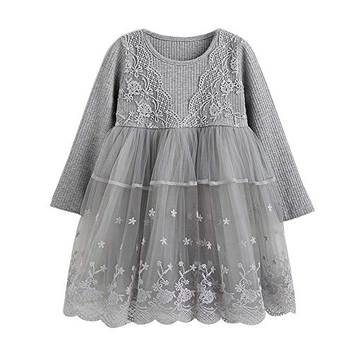 AMSKY Baby Outfits Unisex Newborn,Toddler Kids Baby Girl Lace Flower Princess Tulle Party Pageant Dresses Clothes,Baby Girls' Sleepwear & Robes,Gray,110 -