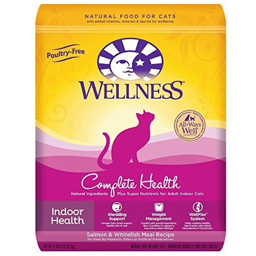 Wellness Complete Health Natural Dry Indoor Cat Food, Salmon